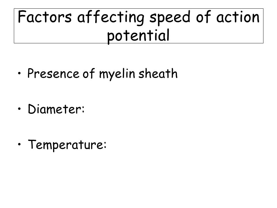 Factors affecting speed of action potential