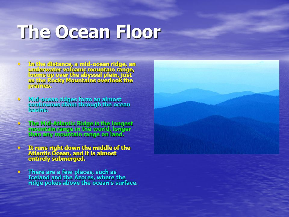 6th grade visual art training underwater sea life ppt video the ocean floor sciox Image collections