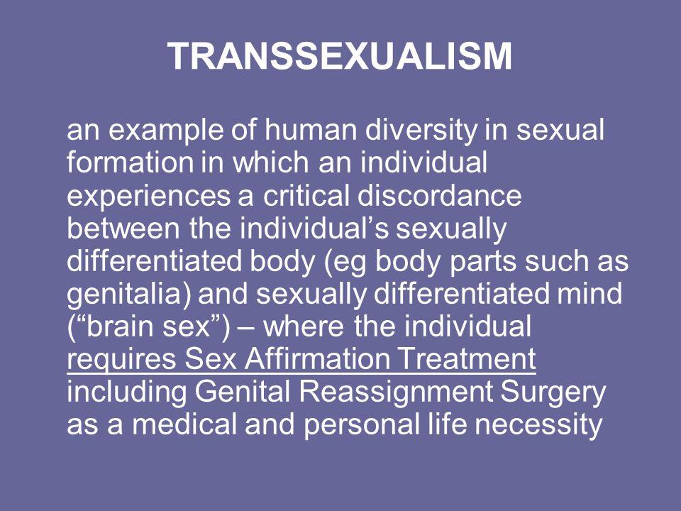 Women dominate transvestites