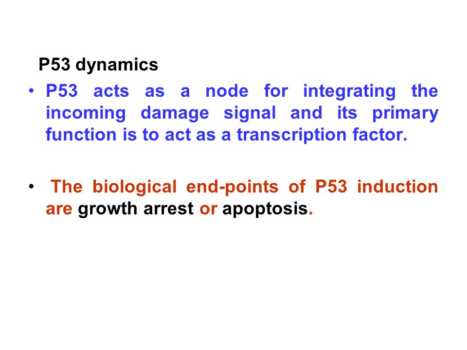 P53 dynamics P53 acts as a node for integrating the incoming damage signal and its primary function is to act as a transcription factor.