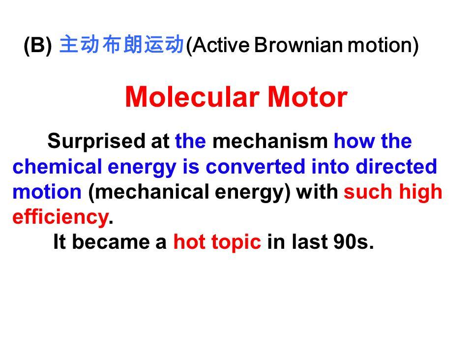 Molecular Motor (B) 主动布朗运动(Active Brownian motion)