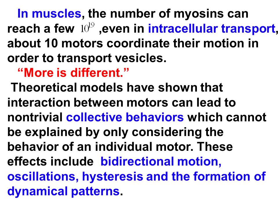 In muscles, the number of myosins can reach a few ,even in intracellular transport, about 10 motors coordinate their motion in order to transport vesicles.
