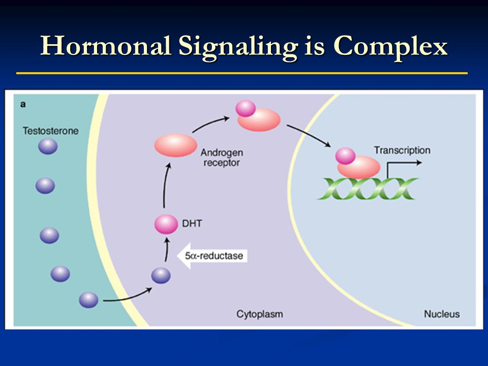 Hormonal Signaling is Complex