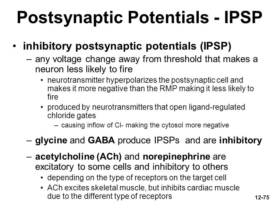 Postsynaptic Potentials - IPSP