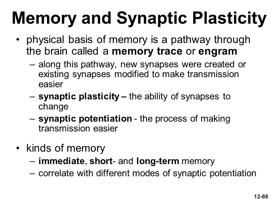 Memory and Synaptic Plasticity