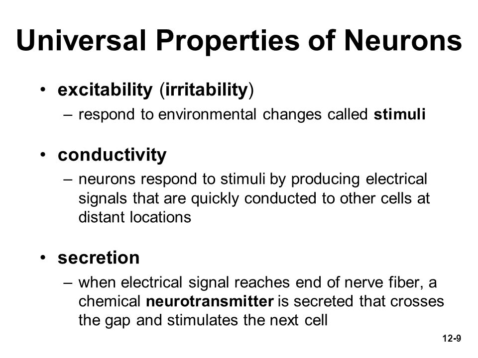 Universal Properties of Neurons