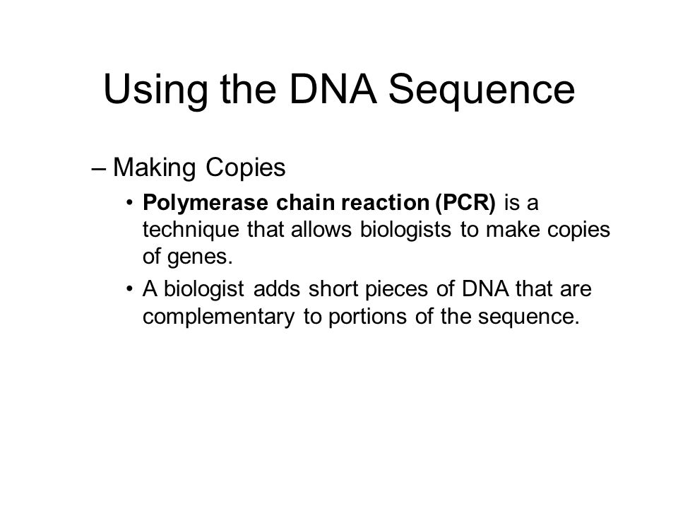 Using the DNA Sequence Making Copies