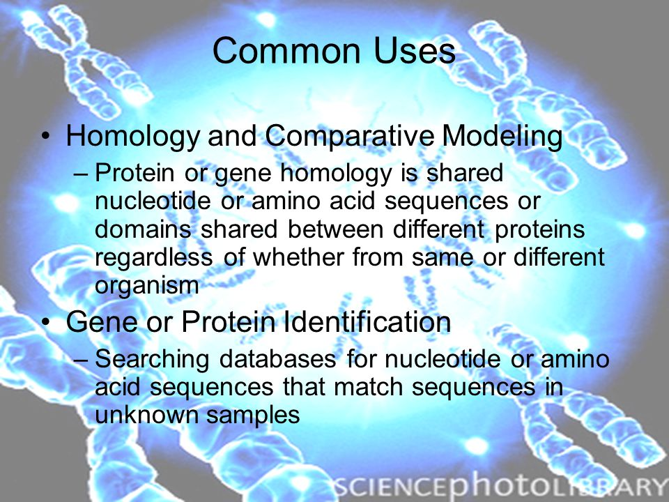Common Uses Homology and Comparative Modeling