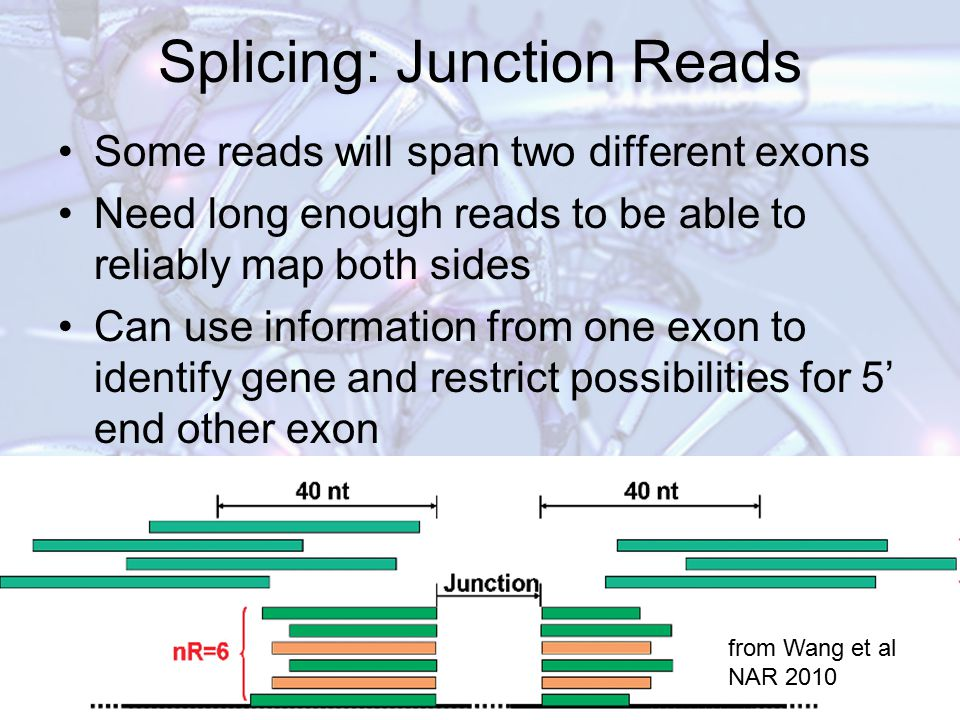 Splicing: Junction Reads