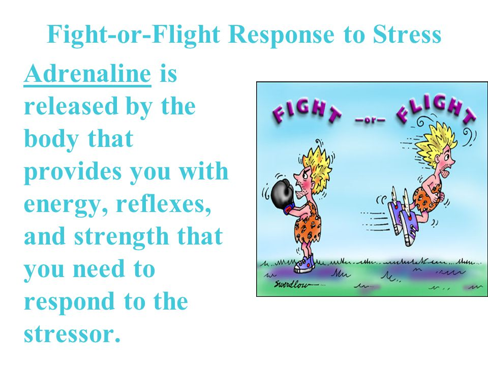 Fight-or-Flight Response to Stress