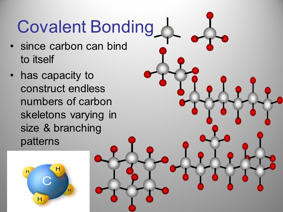 Covalent Bonding since carbon can bind to itself