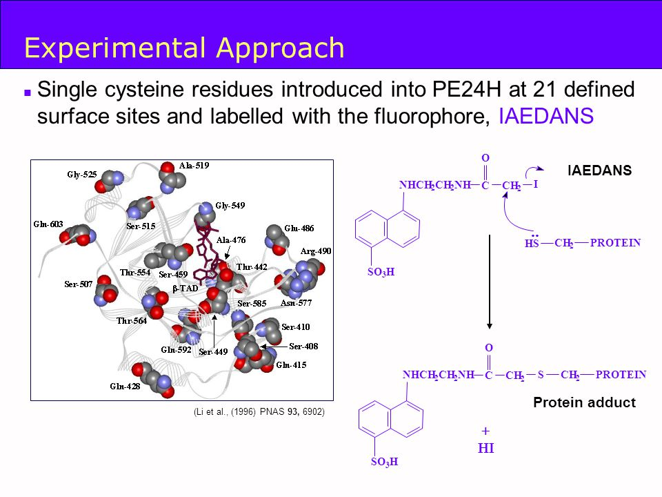 ph d thesis fluorescence quenching Characterization of e coli hfq structure and its rna binding properties a thesis presented to the academic faculty by xueguang sun even a phd vi table of contents dedication iii fluorescence quenching study 69.