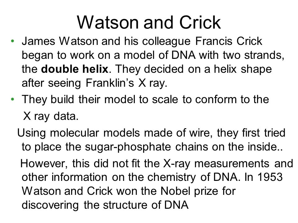 francis cricks work in discovering the dna molecule (a) francis crick (left) and james watson (right) proposed that the dna molecule has a double-helical structure (b) biochemists can now pinpoint the position of every atom.