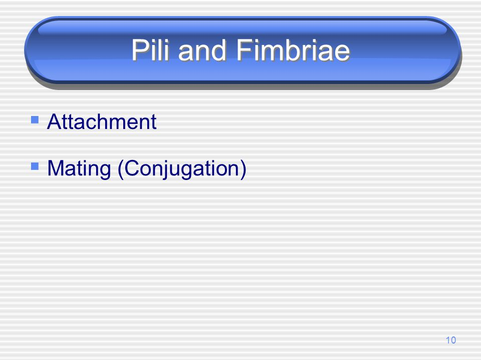 Pili and Fimbriae Attachment Mating (Conjugation)