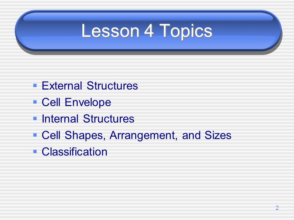Lesson 4 Topics External Structures Cell Envelope Internal Structures