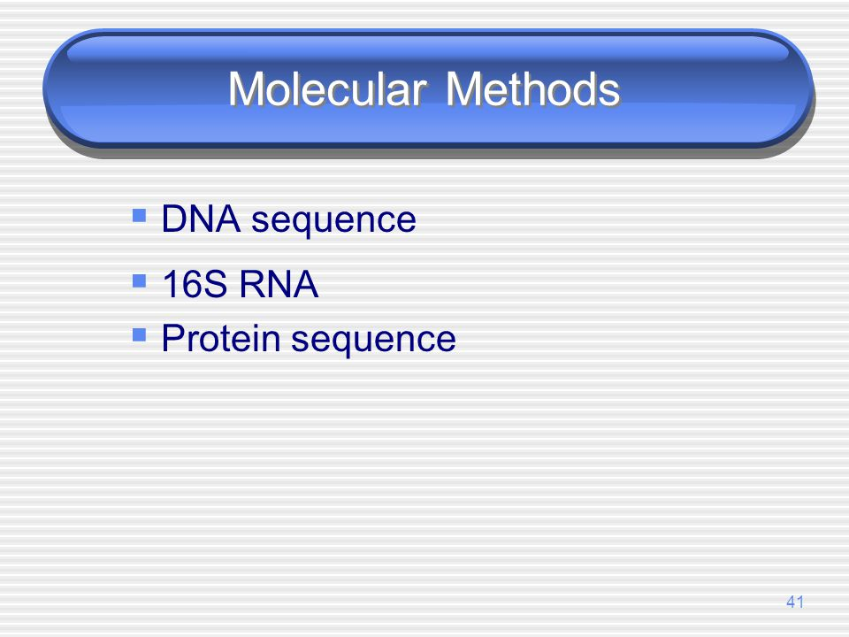 Molecular Methods DNA sequence 16S RNA Protein sequence