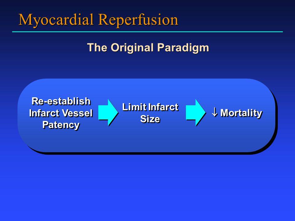 Myocardial Reperfusion