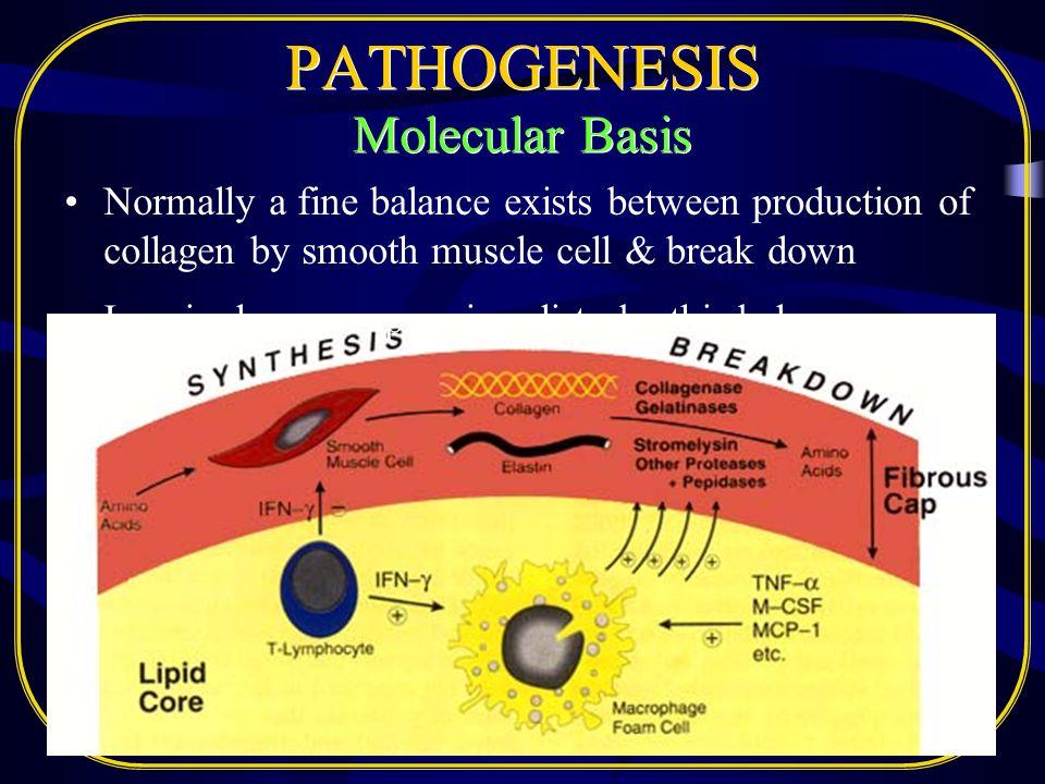 PATHOGENESIS Molecular Basis