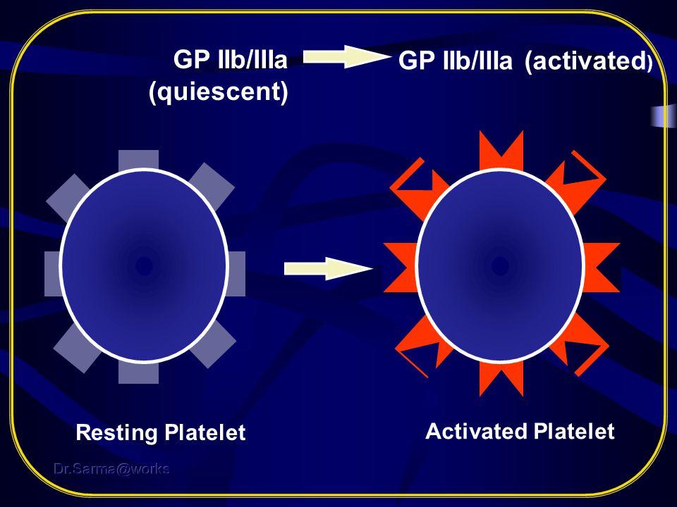 GP IIb/IIIa (quiescent) GP IIb/IIIa (activated)