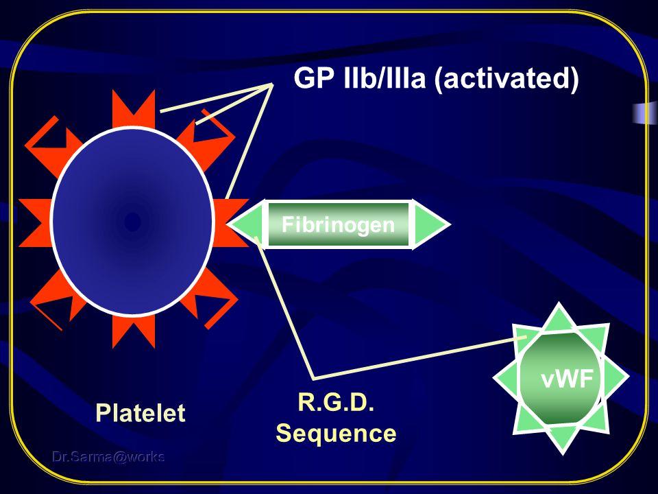 GP IIb/IIIa (activated)
