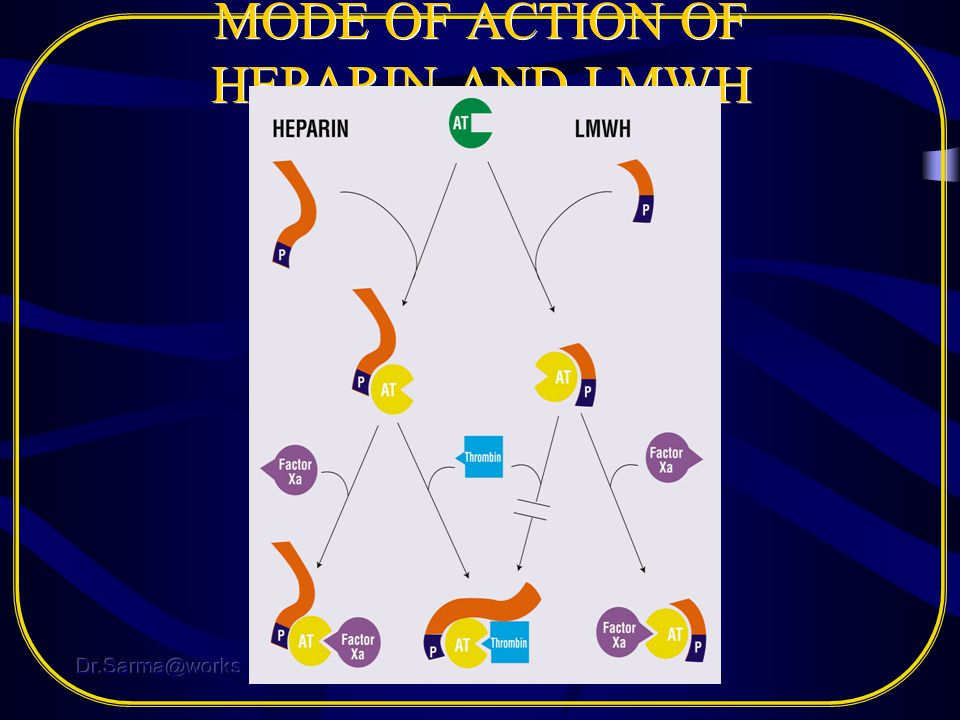 MODE OF ACTION OF HEPARIN AND LMWH