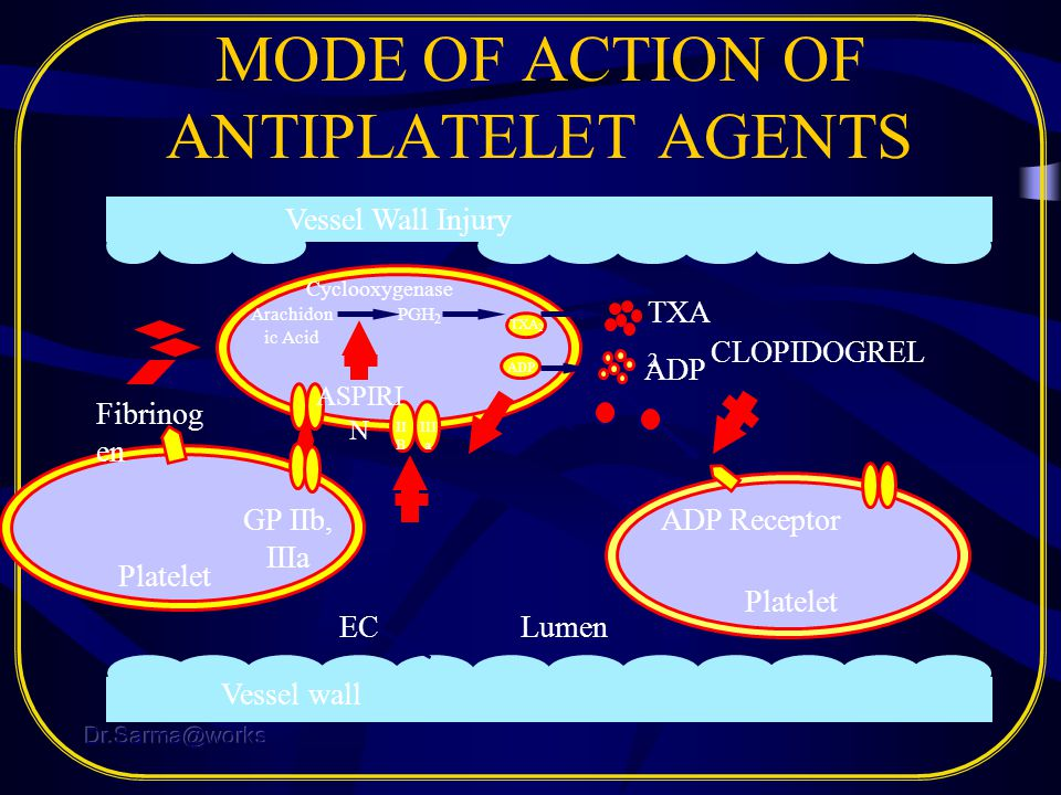 MODE OF ACTION OF ANTIPLATELET AGENTS