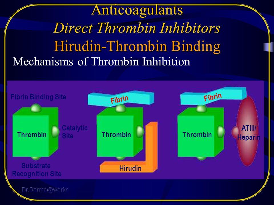Anticoagulants Direct Thrombin Inhibitors Hirudin-Thrombin Binding