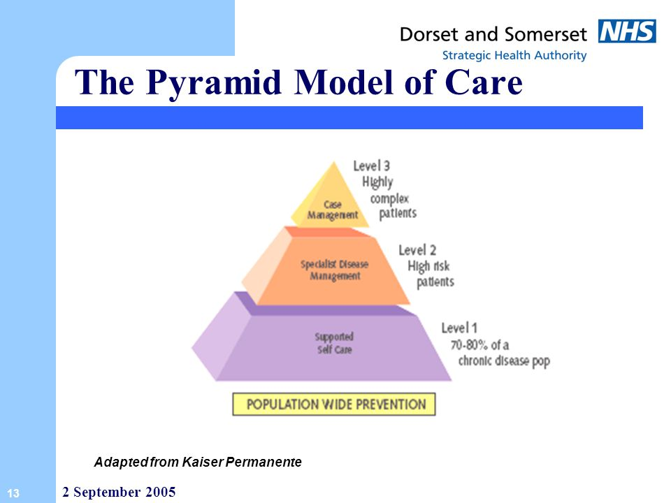The Pyramid Model of Care