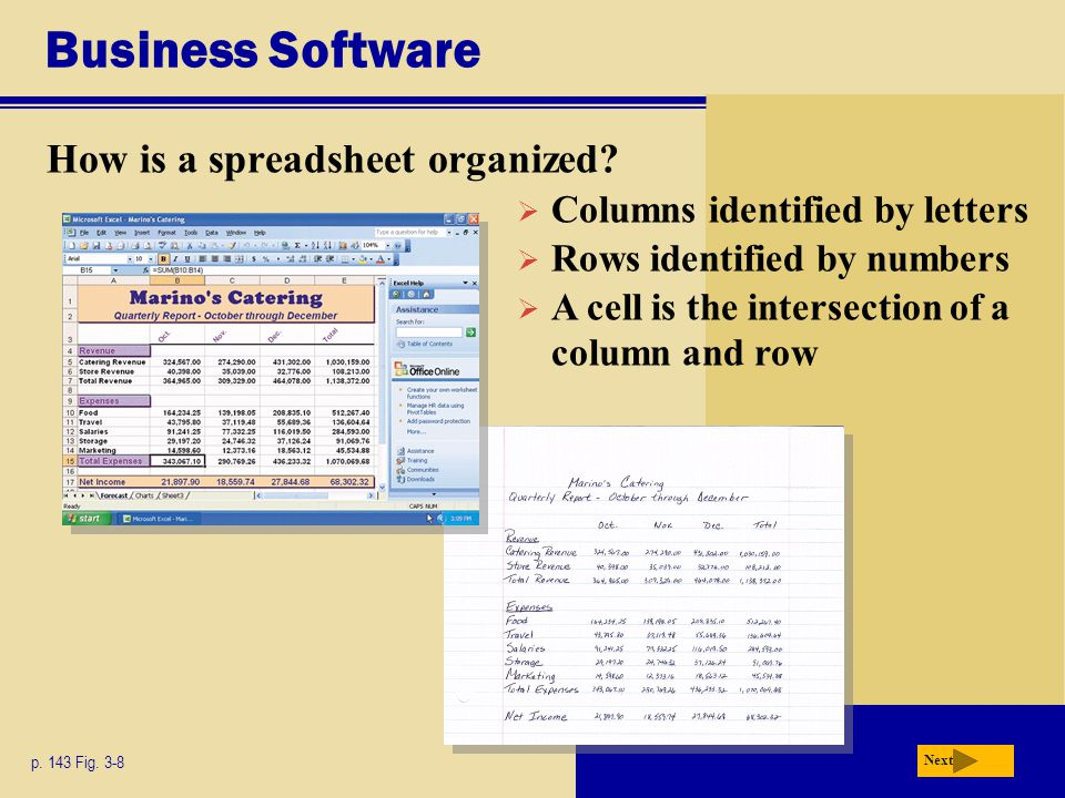 Business Software How is a spreadsheet organized