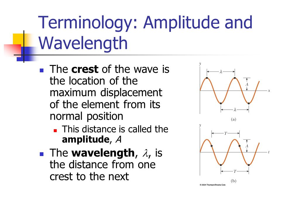 Terminology: Amplitude and Wavelength
