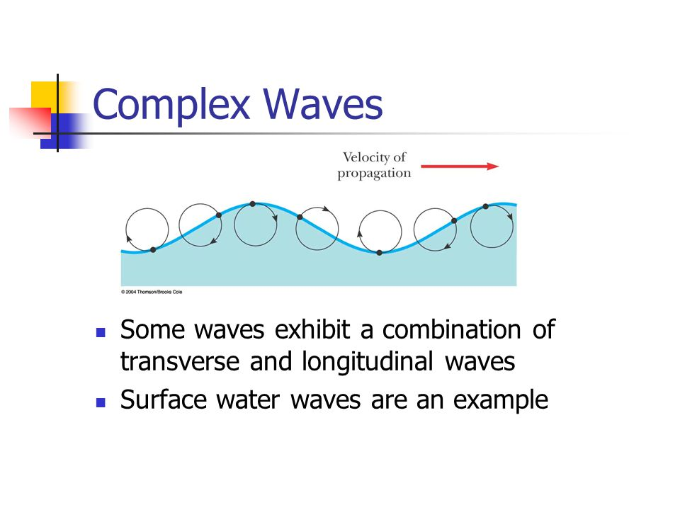 Complex Waves Some waves exhibit a combination of transverse and longitudinal waves.