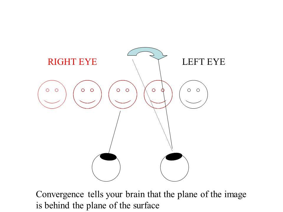Binocular Disparity Points C Nearer Than Fixation P Have Crossed Disparity Points F