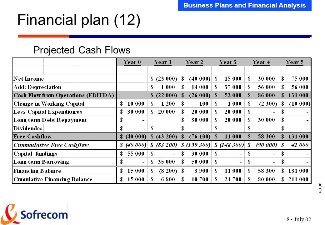 projected cash flow statement pdf
