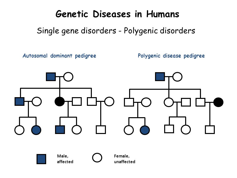 genetics and unaffected female generation Typically, the parents of an affected individual are not affected but are gene  carriers  both males and females can be affected, although males may be more .