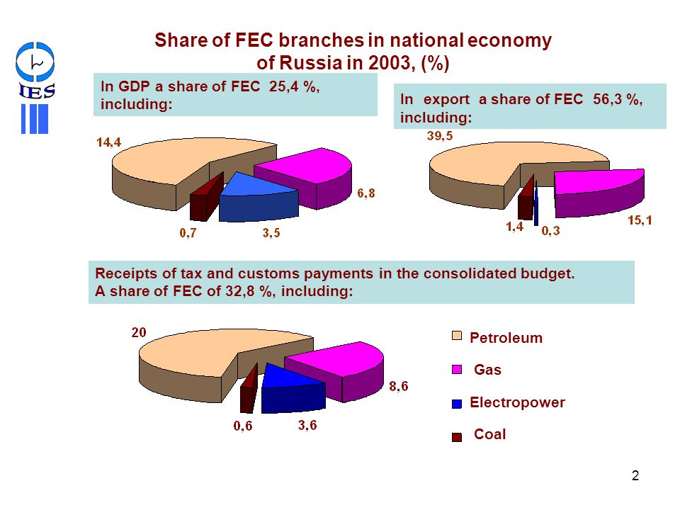 Share of FEC branches in national economy of Russia in 2003, (%)