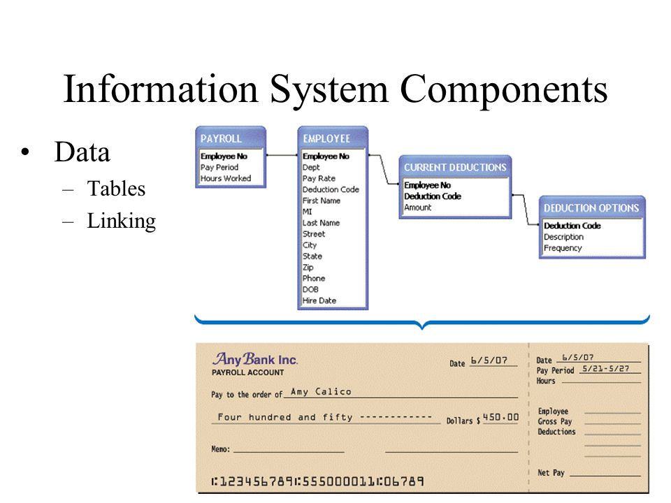 components of information system What are the components that really make an information system work in this lesson, we'll explore ipos (input, process, output and storage) and.