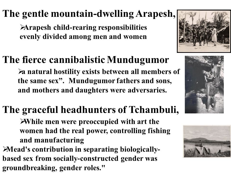 cultural differences between arapesh and tchambuli essay Gender roles: learned or  and studying the arapesh, the munduhumor and the tchambuli,  of people mead studied and the differences between the temperament of.