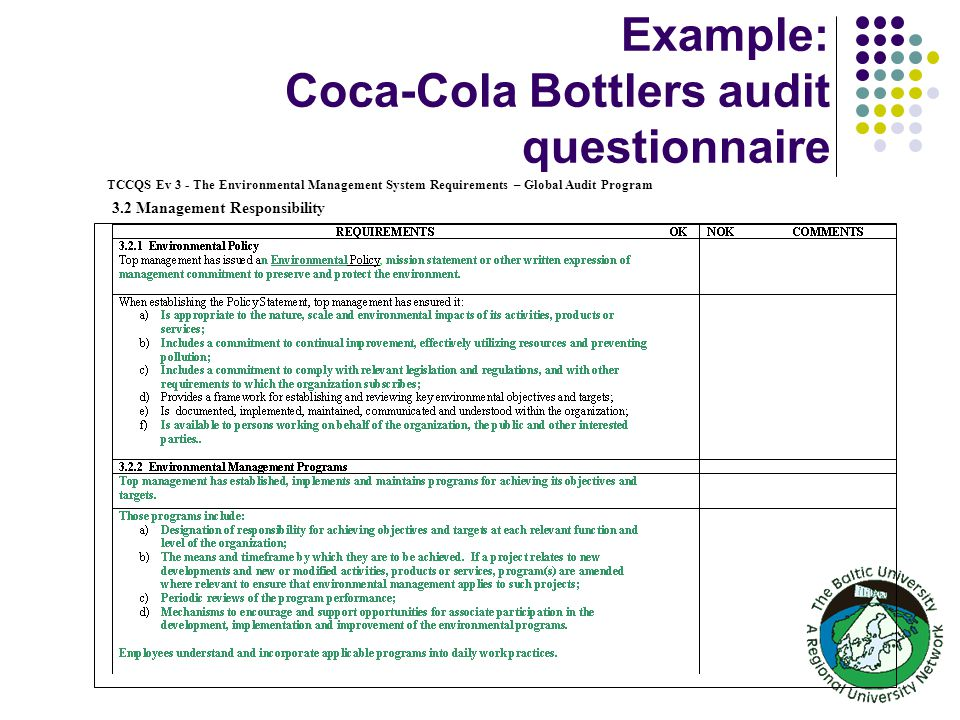 Coca cola auditing project | Term paper Sample - oopapernxfl