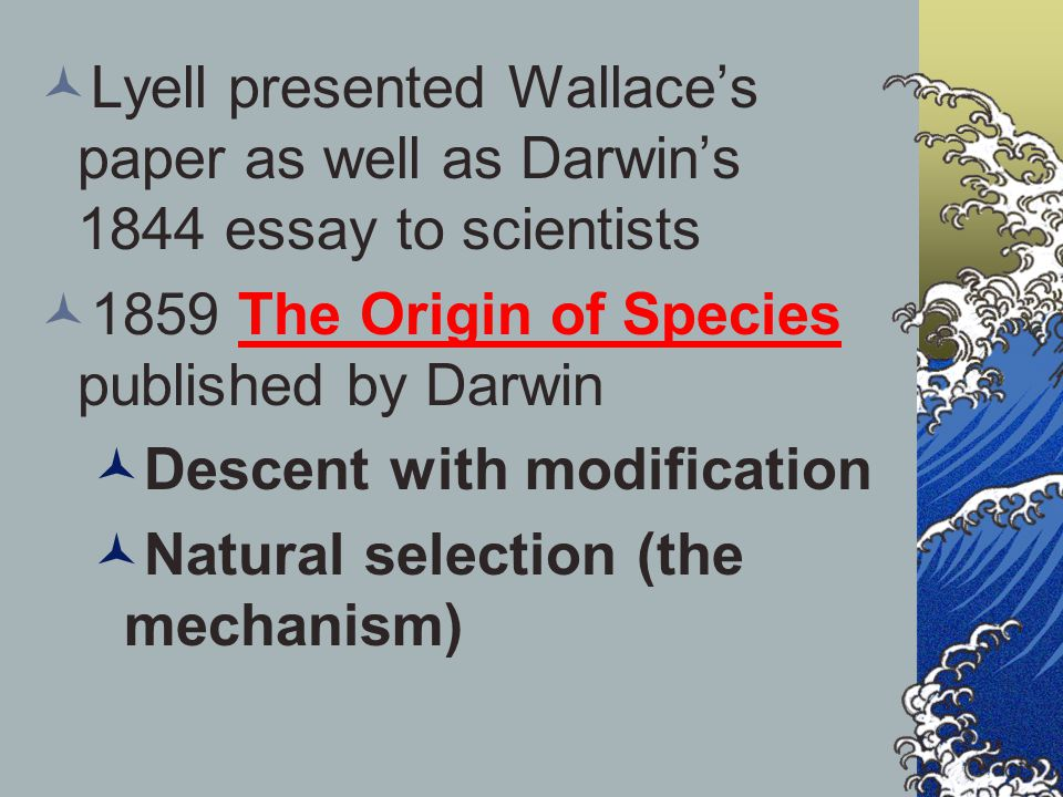 origin of the essay Custom human origin essay writing service    human origin essay samples, help one of the major areas which bring out clearly the concept of grave desecration is the lake hole cave which was discovered by individuals whose main objective was to sell the american skulls and artifacts.