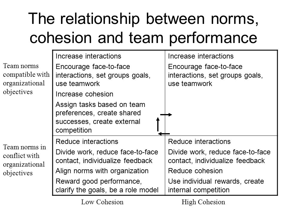 The relationship between norms, cohesion and team performance