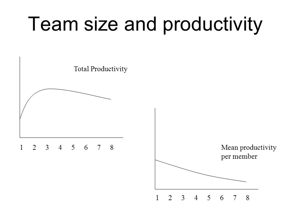 Team size and productivity
