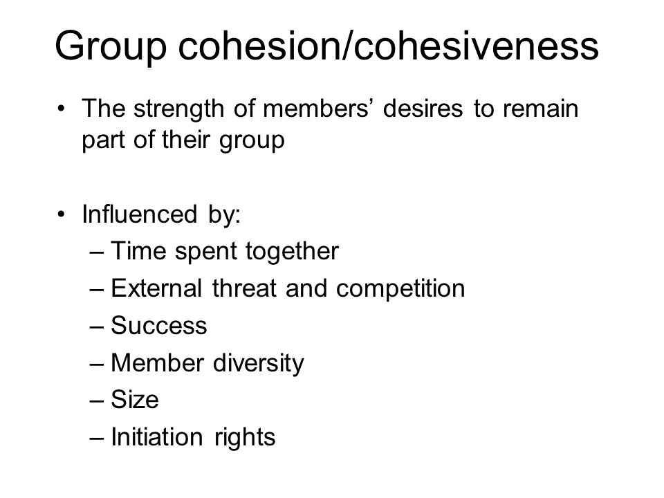 Group cohesion/cohesiveness