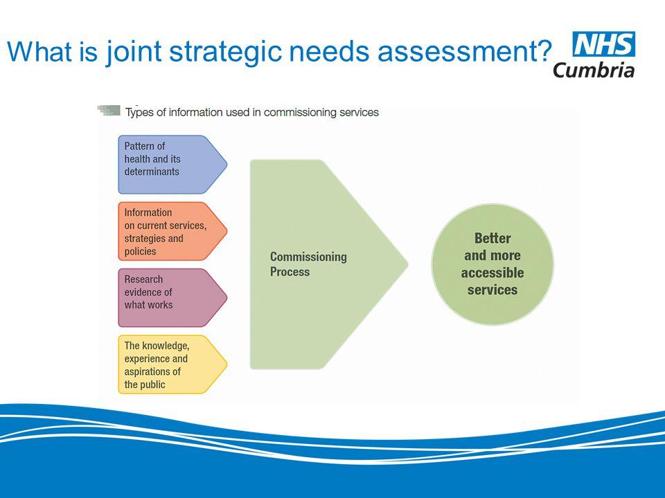 joint strategic needs assessment Information on the joint strategic needs assessment for derby.