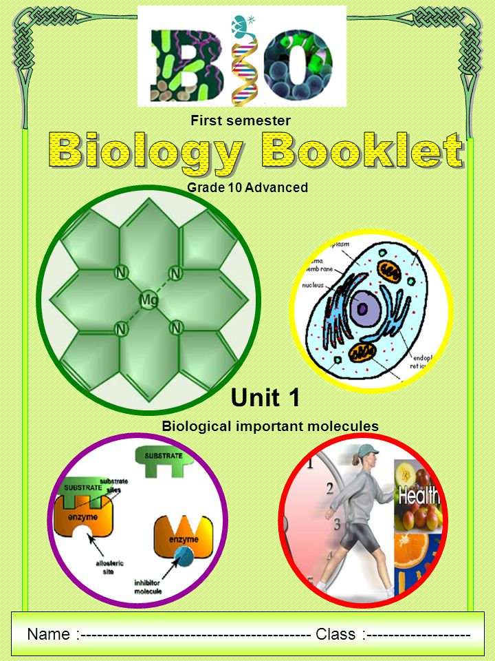 1st sem bio 1 1 1 biology for engineering (bfe) 2 basic electrical technology  where can i find a syllabus for the 1st and 2nd semester for btech 1st year at ism, .