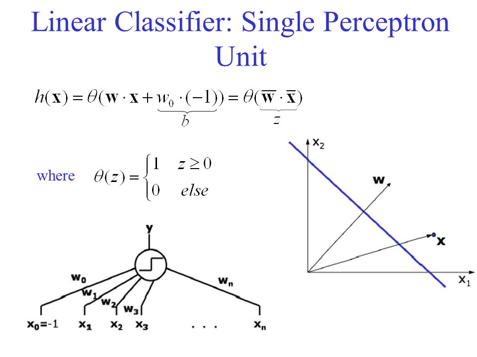 Linear Classifier: Single Perceptron Unit