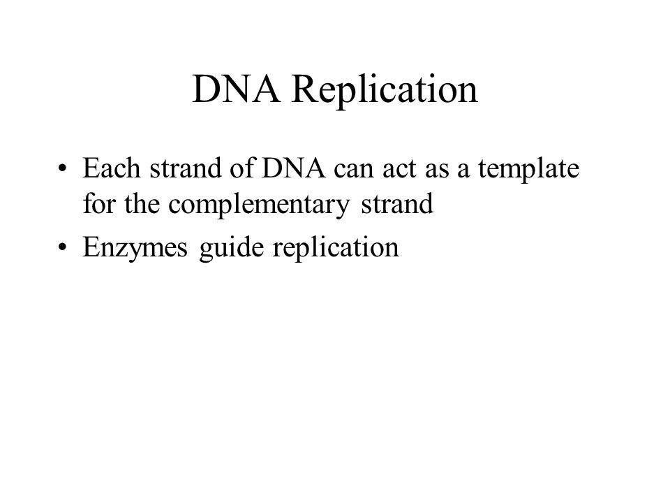 What acts as the template in dna replication gallery templates central dogma of molecular biology ppt video online download 7 dna replication pronofoot35fo gallery pronofoot35fo Images