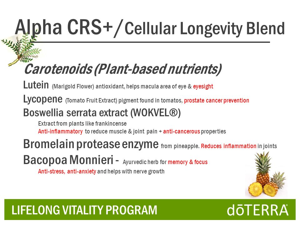 Alpha CRS+/Cellular Longevity Blend