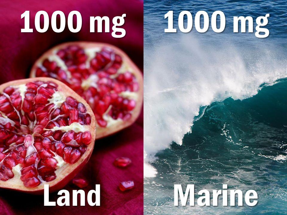 1000 mg 1000 mg Land Marine