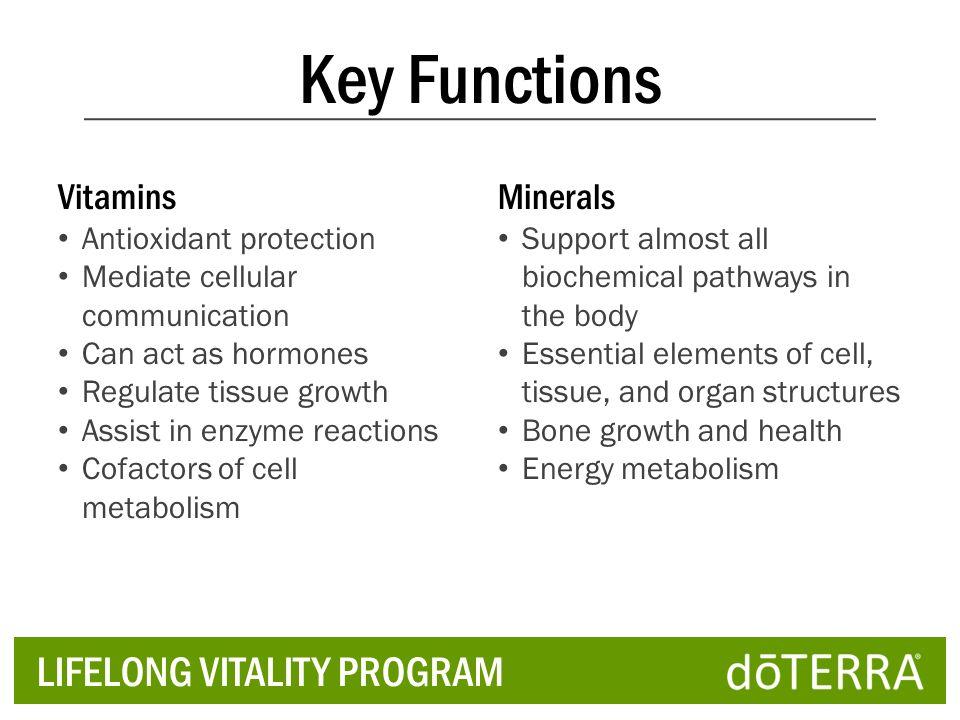 Key Functions LIFELONG VITALITY PROGRAM Vitamins Minerals