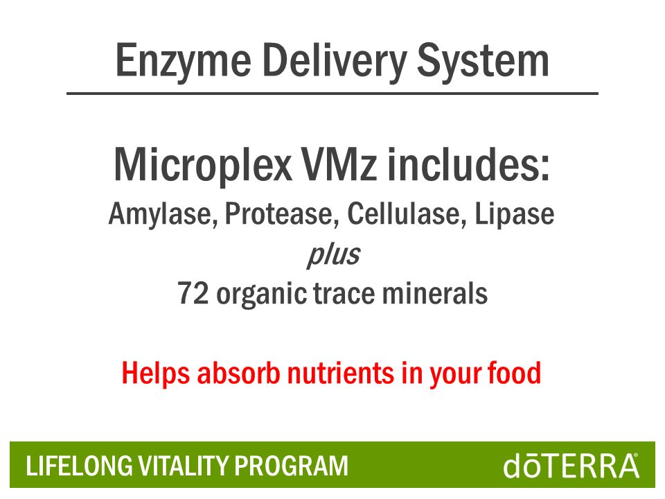 Enzyme Delivery System